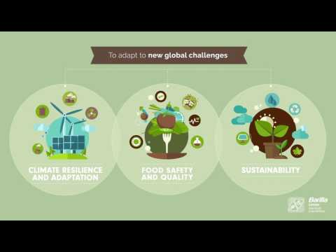 """BCFN Infographics – Common Agricultural Policy """"Agriculture in our Future: the voice of Youth"""""""