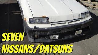 Seven Junkyard Nissans/Datsuns: Sunny, Skyline, FairladyZ, Gloria, Leopard