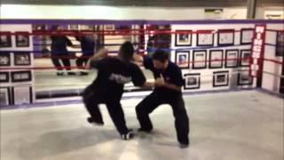 Kogan Self-Defense Video - SPETSNAZ USA 4