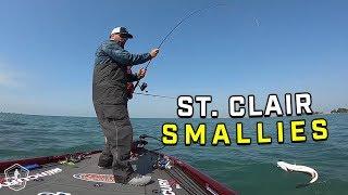 Smallmouth Bass Fishing On Lake St. Clair W/ Scott Martin