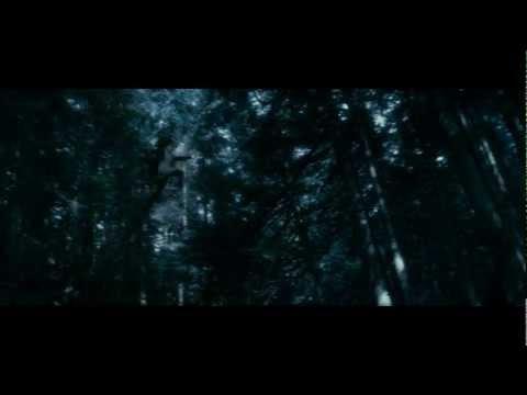 Twilight New Moon Soundtrack - Hearing Damage