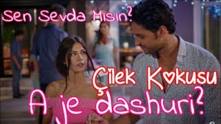 Sen Sevda Mısın? ( A je dashuri? ) Albanian Lyrics Buray ft. Çilek Kokusu/Ëndërr luleshtrydhesh