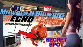 HOW TO ADJUST A NON ADJUSTABLE SECRET FUEL MIXTURE SCREW ON MY FREE ECHO PB250 GAS LEAF BLOWER PICK
