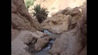Tunisko Výlet Na Saharu