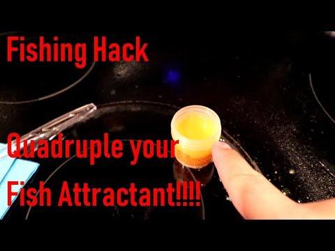Fishing Hack: Quadruple Your Fish Attractant!