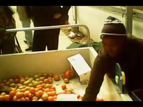 tomatoes market, Botswana