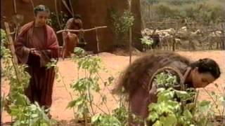 Ветхий Завет - Ной строит ковчег