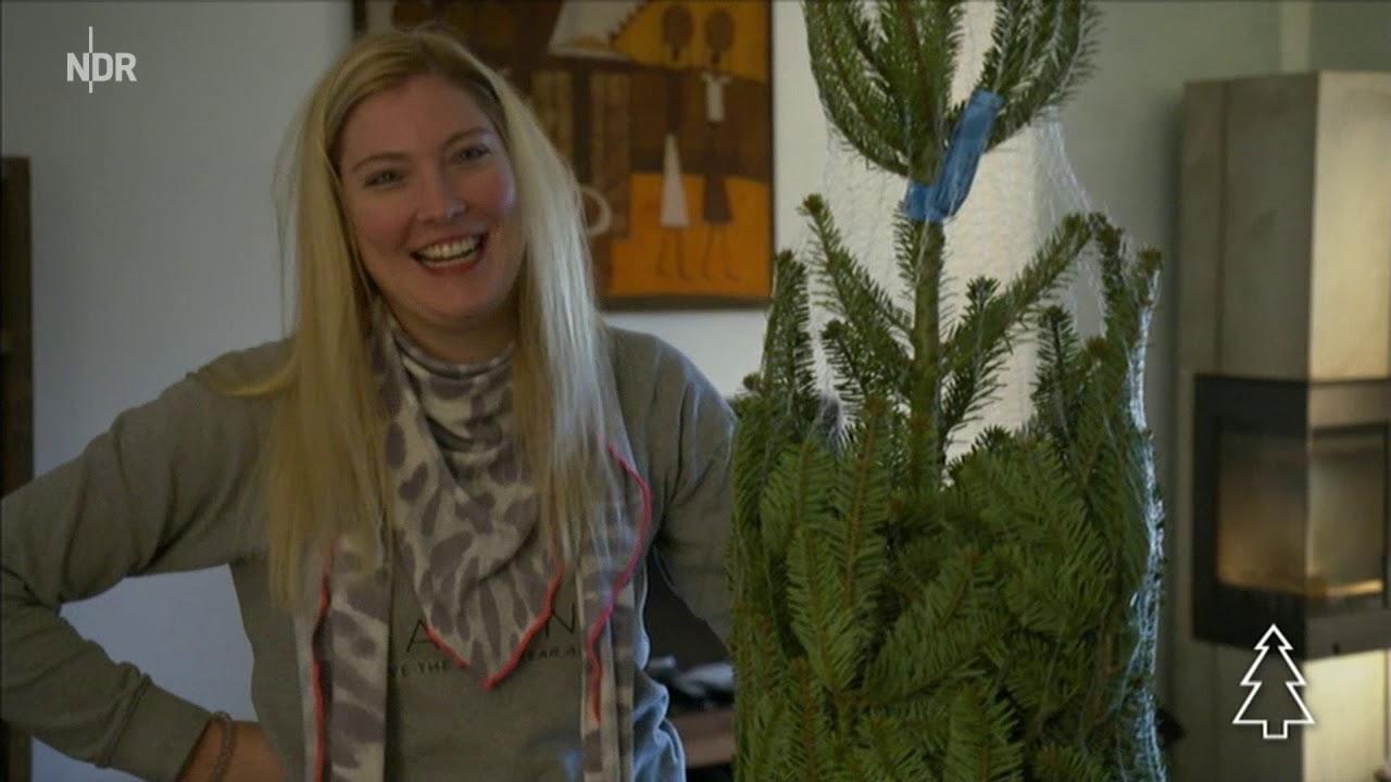 Ndr Weihnachtsbaum.Weihnachtsbaum Hamburg Ndr 3 Hamburg Journal Tannen Jan Im Weihnachtsendspurt
