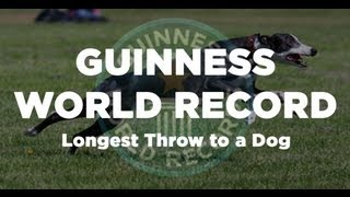 GUINNESS WORLD RECORD - Longest Flying Disc Throw to a Dog @ 134 yards (402 feet)