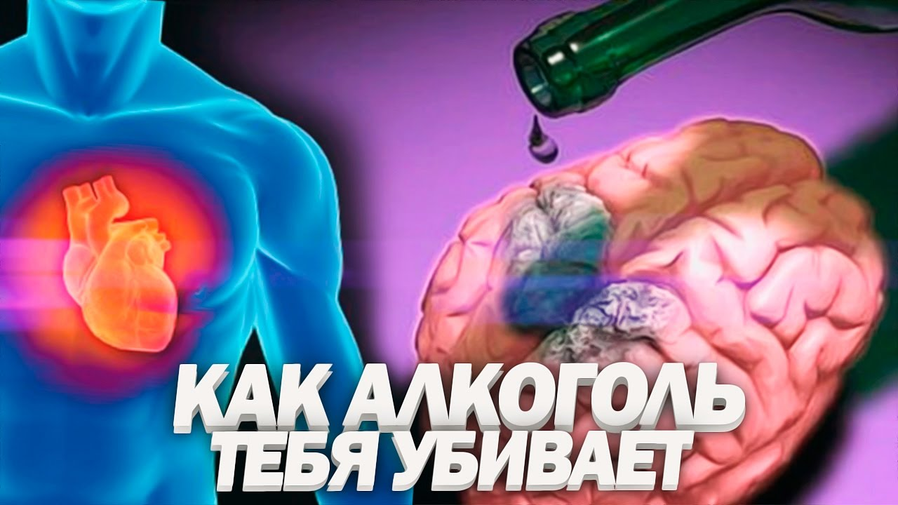 Пагубное влияние алкоголя на организм человека