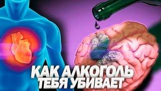 видео Польза пива и его вред для организма мужчины