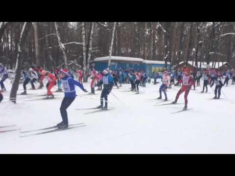 Лыжня России 2017 Воронеж 10 км св.с. - СТАРТ