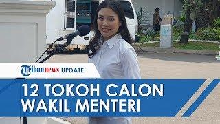 Deretan Tokoh yang Dipanggil Jokowi Jelang Pelantikan Wakil Menteri, Ada Sosok Angela Tanoesoedibjo