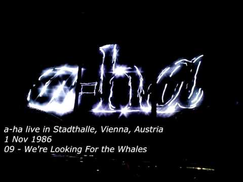 09   We're Looking For the Whales - a-ha - Live in Stadthalle, Wien, Austria 1986