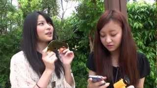 2012年5月24日にUSTREAMで配信した『萩原舞ですが、、、なにか??』高...