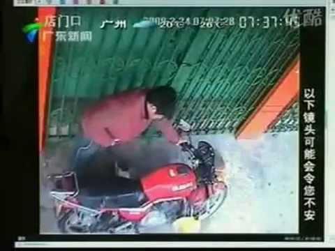 【超閲覧注意】中国の猫虐待事件