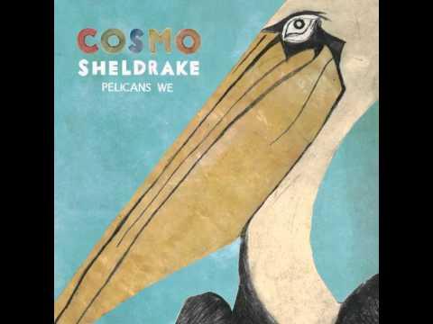 vorgestellt: Cosmo Sheldrake
