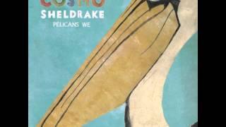 Cosmo Sheldrake - Tardigrade Song