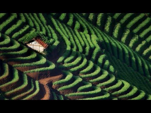 great-landscape-terasering-panyaweuyan-majalengka.