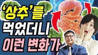 [건강]★'상추'를 자주 먹으면 몸 안에 '이것'이 사라진다고 합니다!★상추 효능 10가지와, 상추효능 200% 득보기!