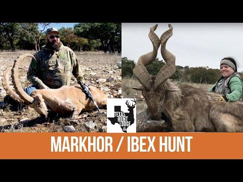 Hunting SUPER EXOTICS At Texas Hunt Lodge - Nubian Ibex / Markhor Hunt