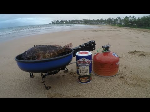 Catch n' Cook on a Millionaire's Beach