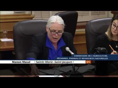 Entente entre Hydro-Québec et l'Israel Electric Corporation, Manon Massé questionne Éric Martel
