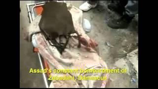Syria, Zabadani - Damascus, Assad