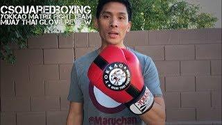 16 Ounce Yokkao Fight Team (Matrix) Muay Thai Boxing Glove Review