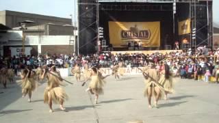 baile de la selva ( CARAPACHOS ) - colegio ingenieria
