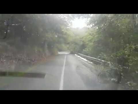 Ramas y árboles caídas en la carretera de A Pobra de San Xiao a Lancara