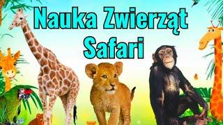 Nauka Zwierząt Safari dla dzieci | Odgłosy Dzikich Zwierząt | Zwierzęta Safari