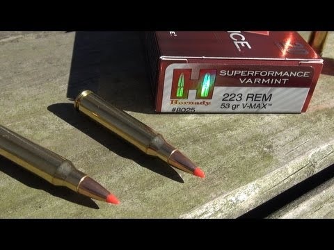 210 YARDS BALLISTICS GEL TEST:  223 Hornady Superformance Varmint VMAX