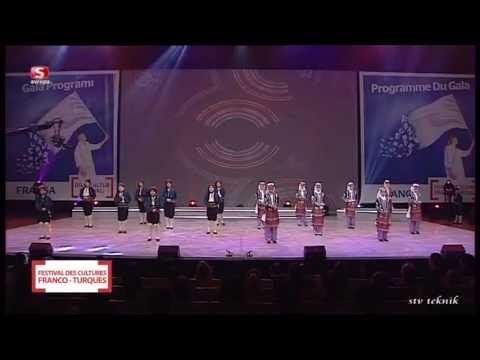 Türk Fransız Dil ve Kültür Festivali 2013 Lyon
