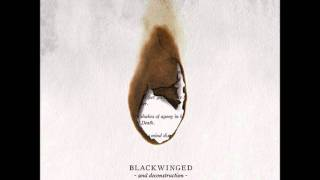 Blackwinged - Death Curse