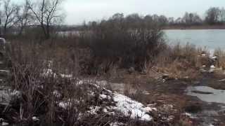 Рыбалка на фидер под Серпуховым. Ока , май 2018. Дубль два