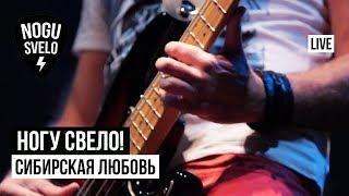 Ногу Свело! - Сибирская любовь (Live)