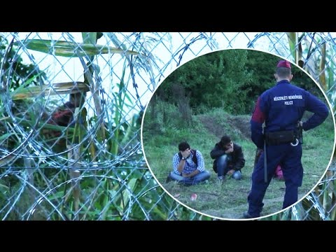 First migrant arrested at closed Hungary border as new laws kick in