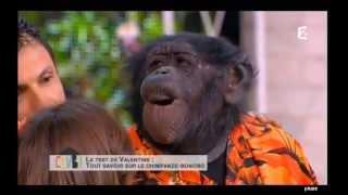 Tiby dans « Comment ça va bien ! » - 27 juin 2013 - France 2