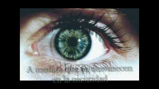 The Light Behind Your eyes(subtitulada) - My Chemical Romance