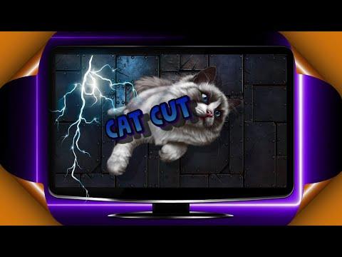Как заработать в интернете на сокращении ссылок, отличный заработок в интернете для лентяев, CAT CUT