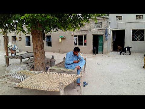Pakistan Village Life Daily Routine In Rural Punjab