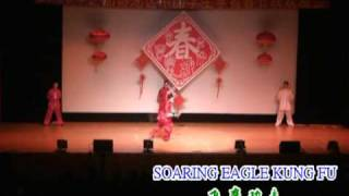 Soaring Eagle Kung Fu - Spear & Straight Sword (枪、剑)
