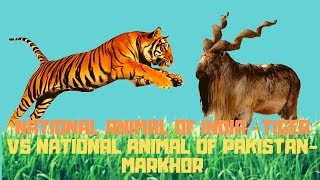 National Animal of India Vs National animal of Pakistan || Markhor Vs Tiger || Jungle Safari