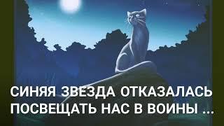Коты Воители , история Яролики // Белка Ня .
