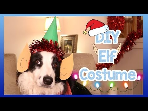 diy-christmas-santa-elf-costume-for-dogs!-how-to-make-an-easy-homemade-elf-costume-for-your-dog!