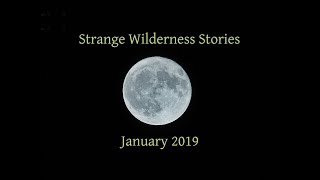 A Collection of Strange Wilderness Stories - January 2019
