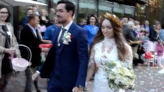 Свадьба Ильи Первухина
