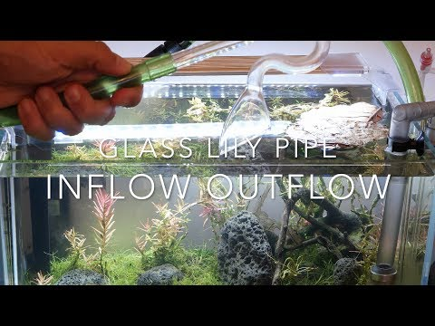 Glass Lily Pipe Set for Nano Aquarium