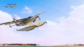 Dreamdays Seawings